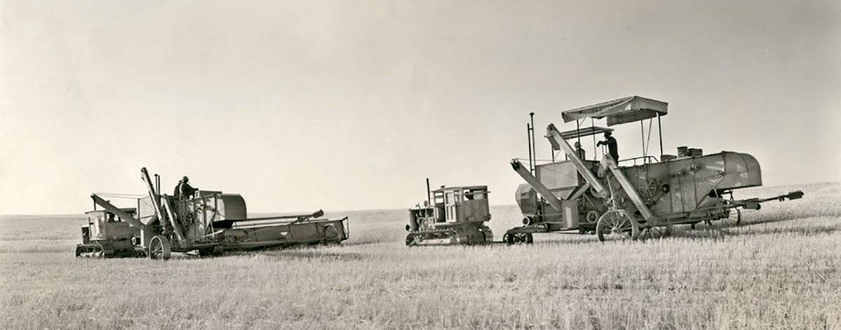 Barnes Dryland Wheat Operation 1935